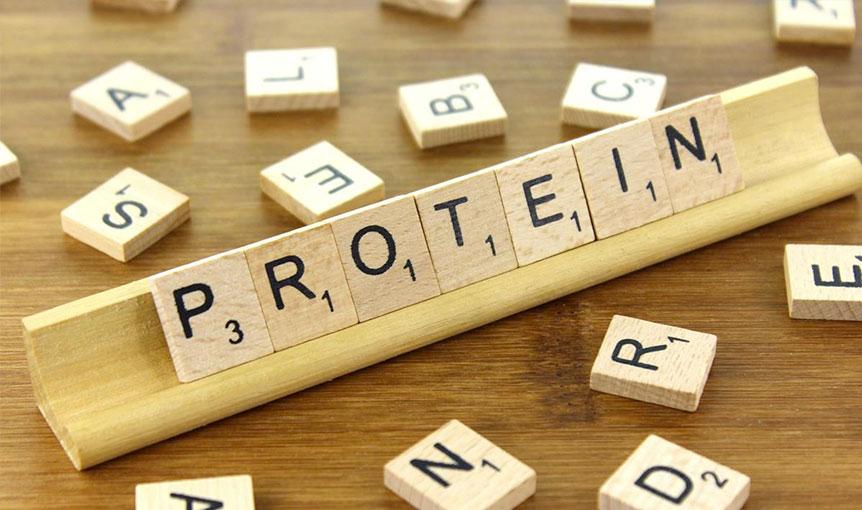 Je protein zdravý?