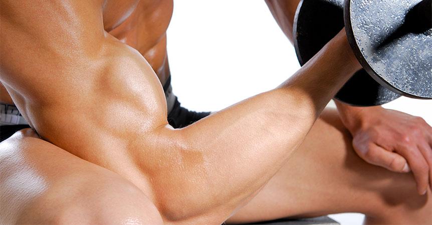 Po čem rostou svaly?