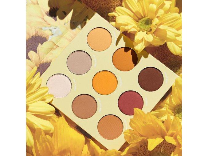 Sunflower paletteCloseup 800x1200