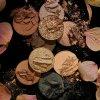 Dark Blooms Grandeur shades 800x1200