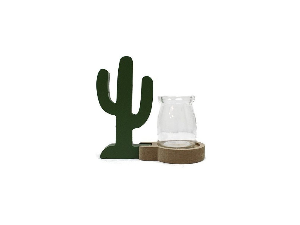 hydroponicke dekoracne kvetinace kaktus2