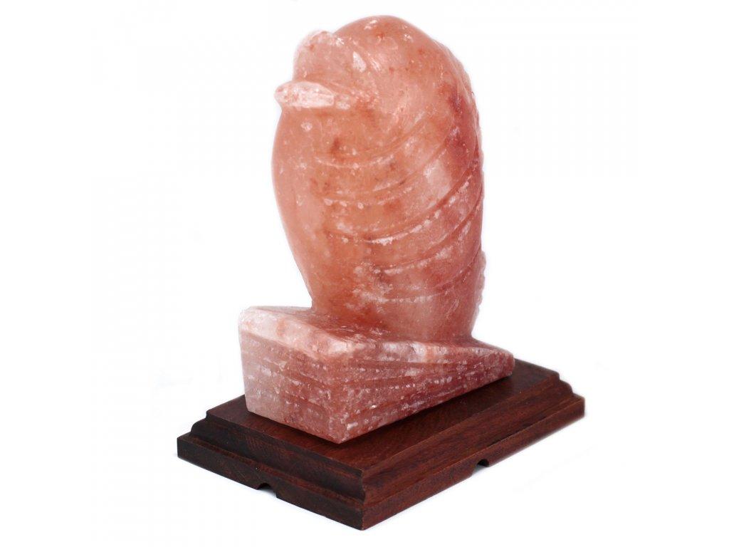 himalajska solna lampa ryba (3)