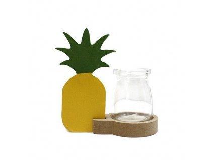 hydroponicke dekoracne kvetinace ananas