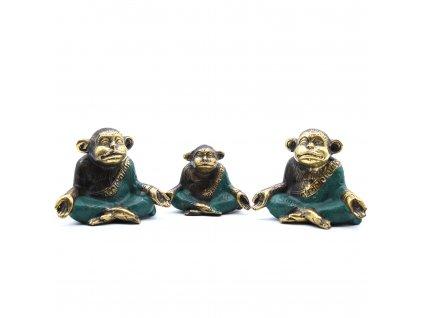 meditujuce opice