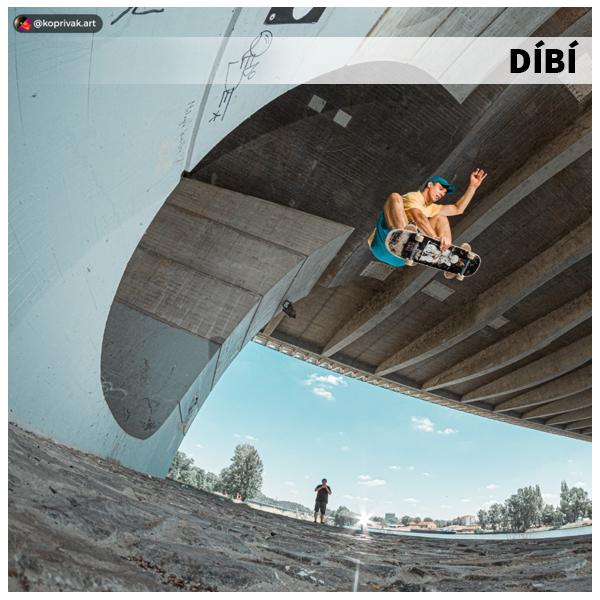 DIBI-bio