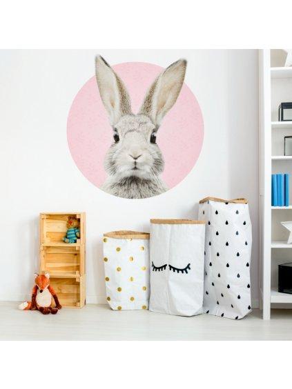 Detská nálepka na stenu zajačik DK226