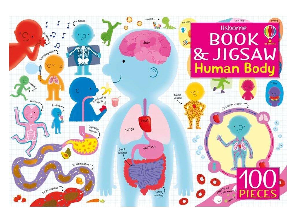Book and jigsaw Human Body