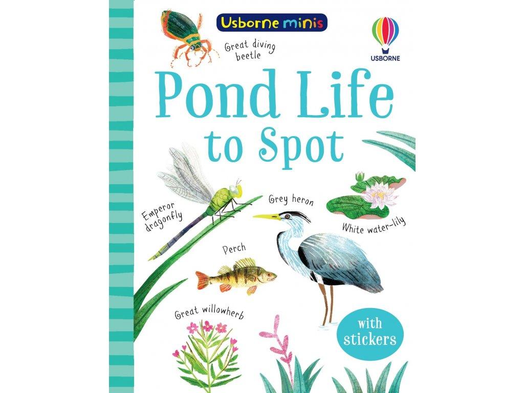 Pond Life to Spot 1