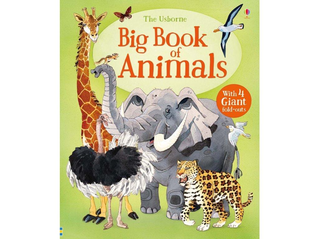 Big Book of Animals 1