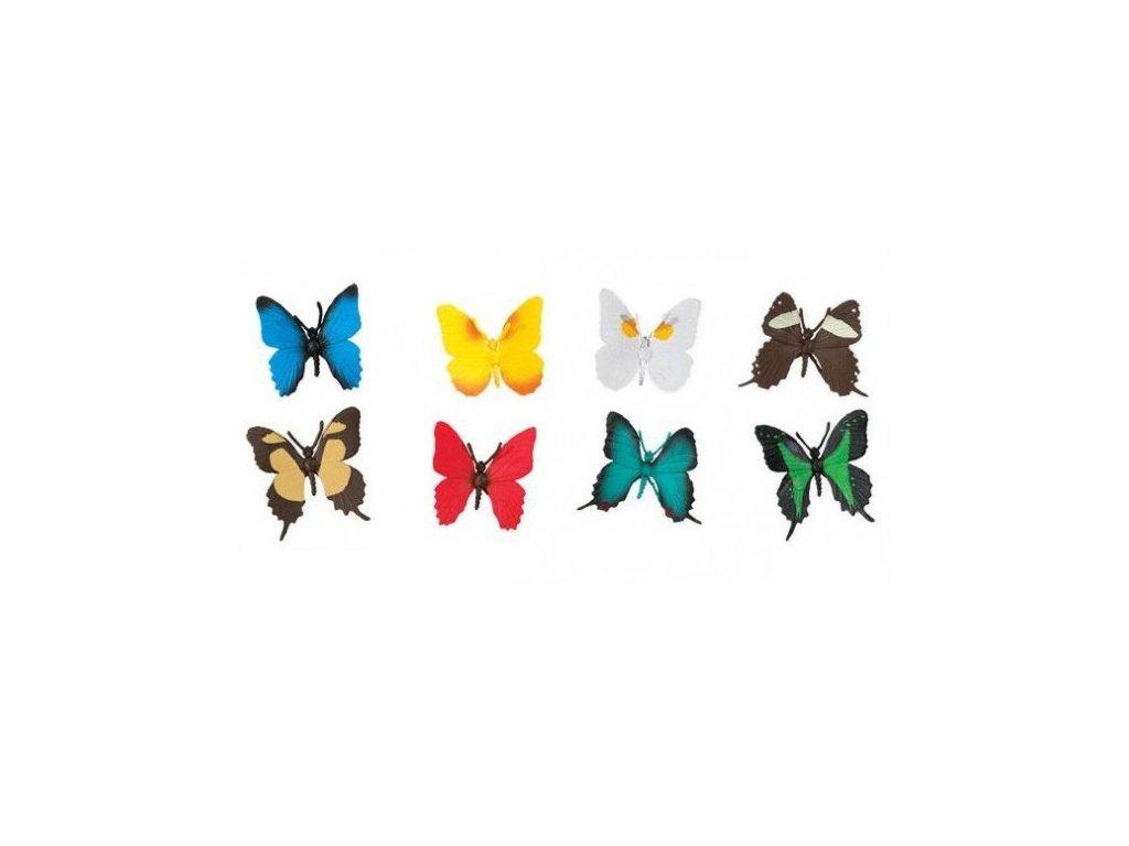 Tuba Motýli 3