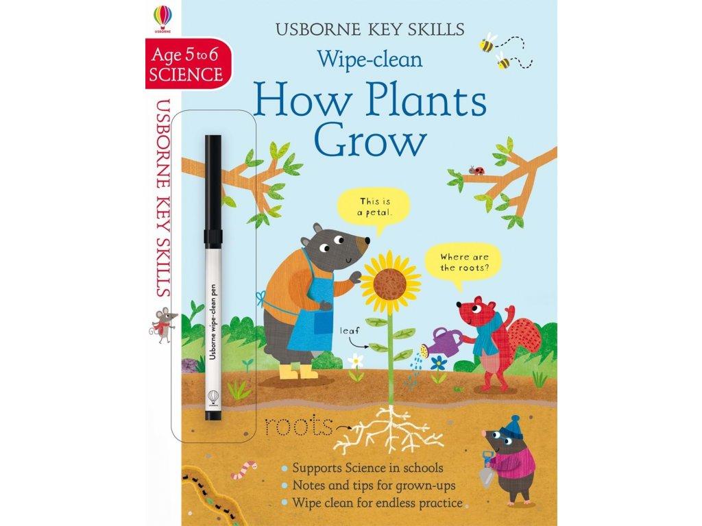 Wipe Clean How Plants Grow 5 6