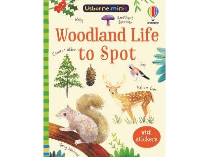 Woodland Life to Spot 1