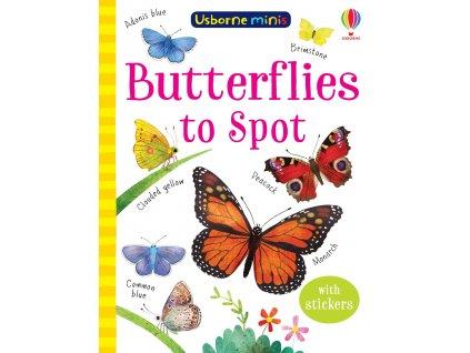 Butterflies to Spot 1