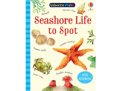 Seashore Life to Spot 1