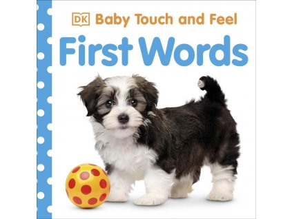 Baby Touch and Feel First Words 1