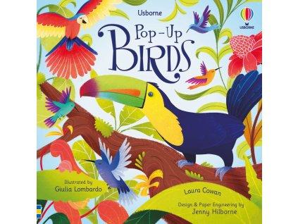 Pop Up Birds 1