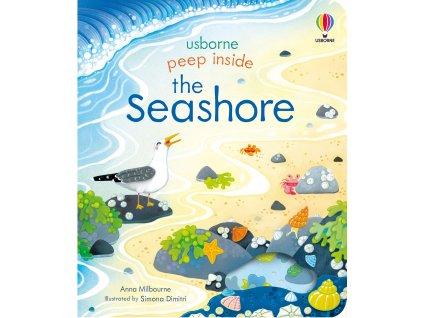 Peep Inside the Seashore 1