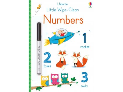 Little wipe clean numbers