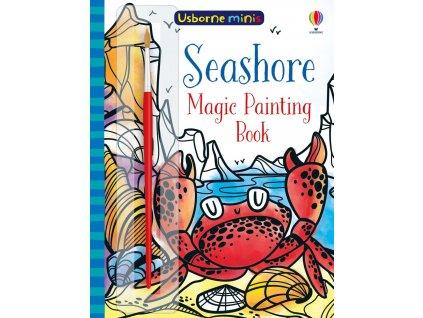 Usborne minis Magic Painting Book Seashore