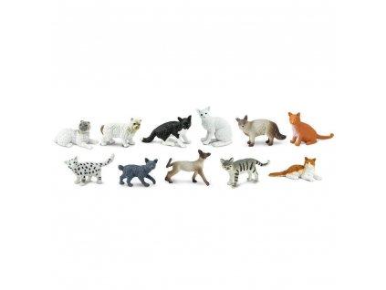 Tuba Domácí kočky 1
