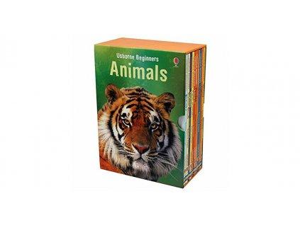 Usborne Beginners Animals 1