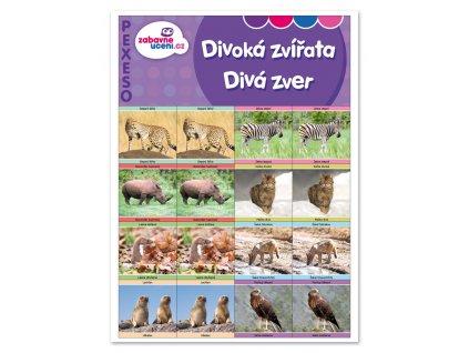 Zábavné učení Pexeso Divoká zvířata 1