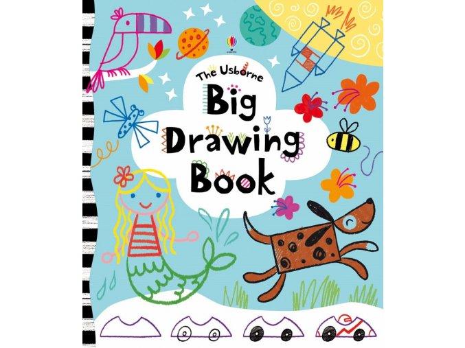 Big Drawing Book 1