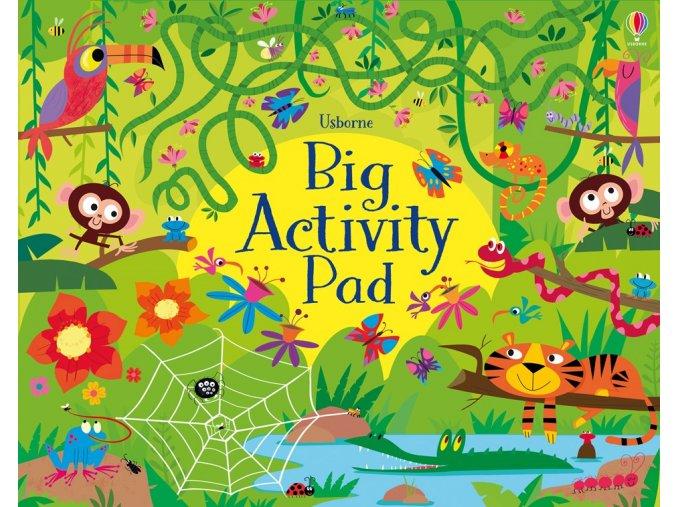 Big Activity Pad 1