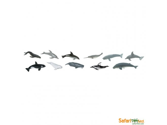 Tuba Velryby a delfíni 2