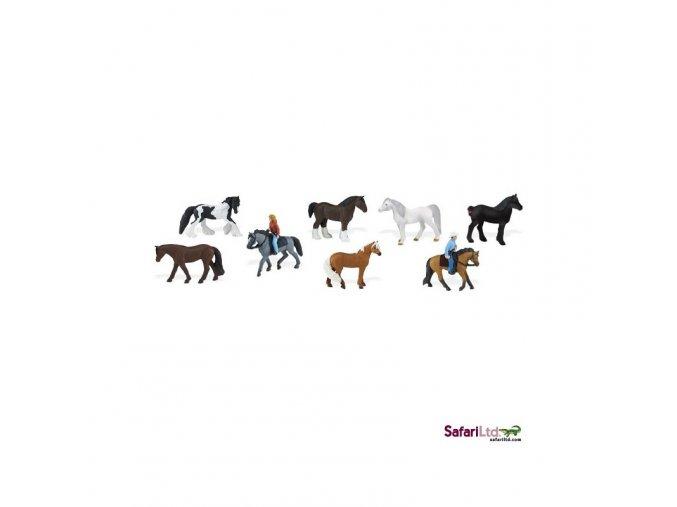 Tuba koně a jejich jezdci 1