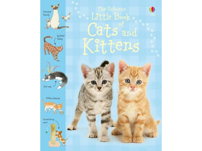 Little book of cats and kittens