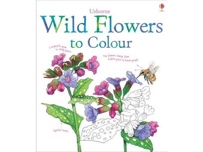Wild Flowers to Colour 1
