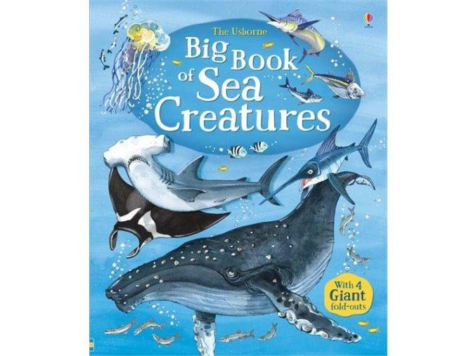 Big book of sea creatures 1