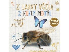 Z larvy včela, z kukly motýl 1
