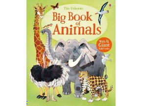 Big Book of Animals 1