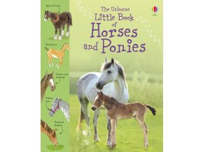 Little book of horses and ponies 1