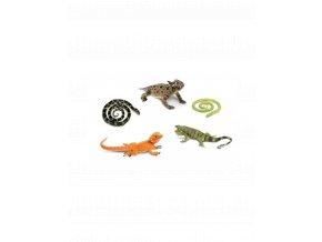 Hadi a ještěři (5 ks)