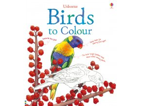 Birds to Colour 1