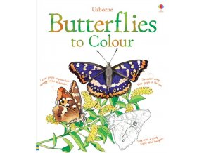 Butterflies to Colour 1