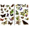 Butterflies Sticker Book 4