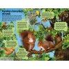 Velká kniha zvuků v lese 5