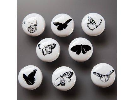 Motýlata na šuplata