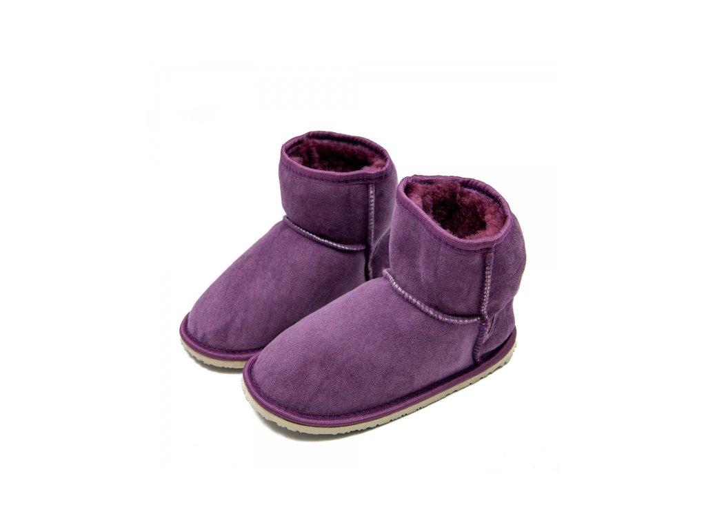 dingo purple 2