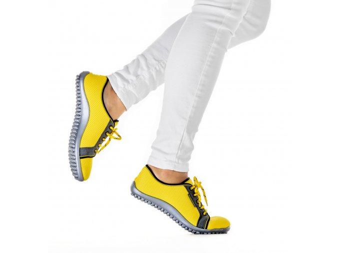 aktiv žluté2