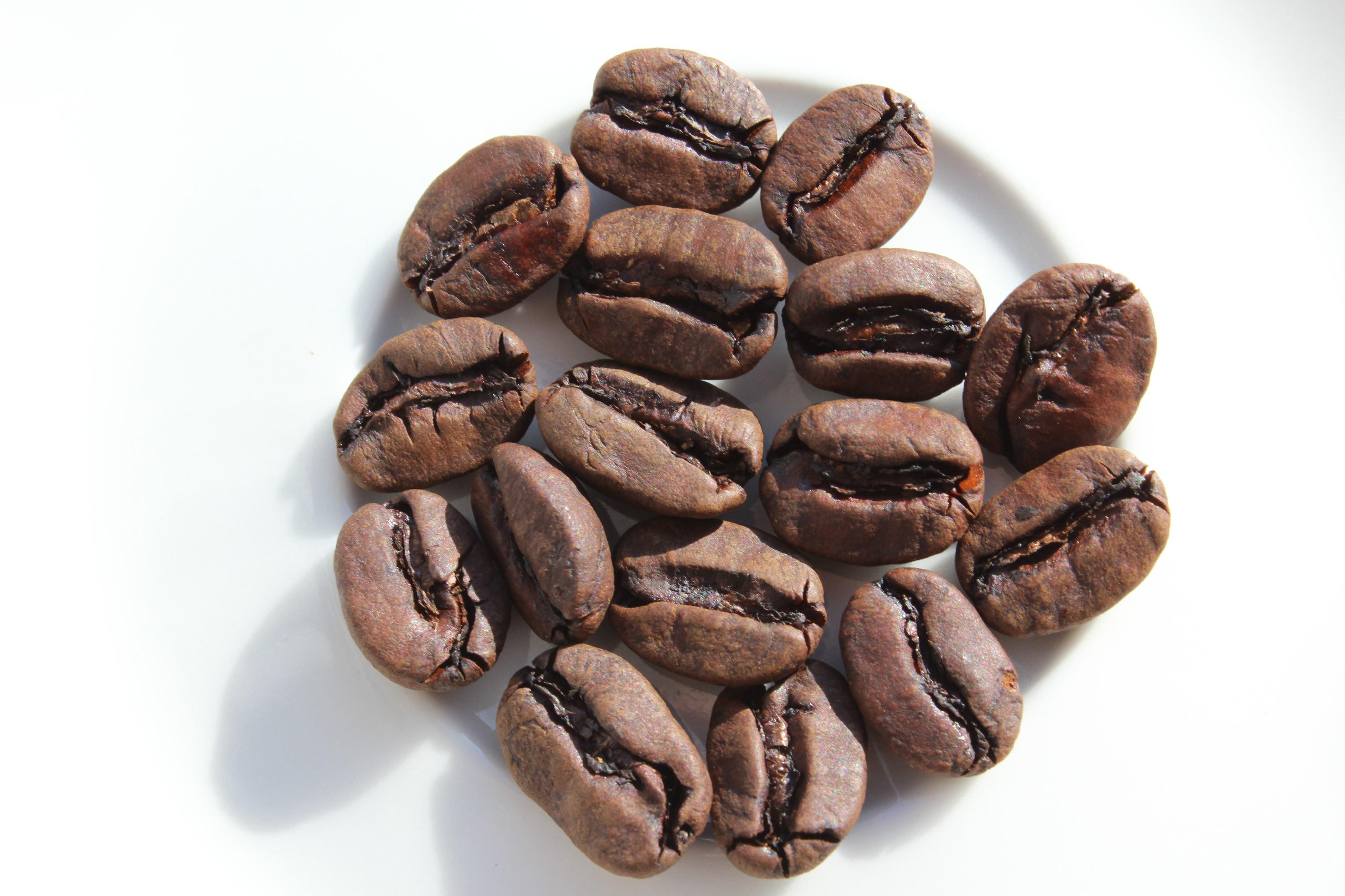 Bez kofeinu