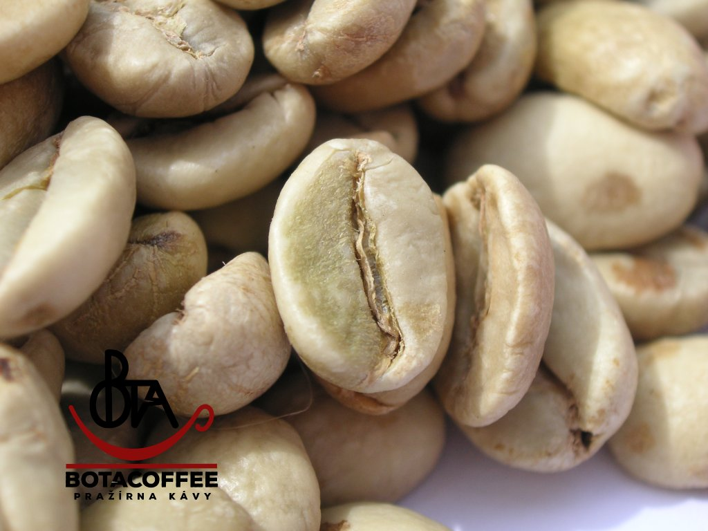 India Malabar AA Monsooned - zelená káva (1kg)