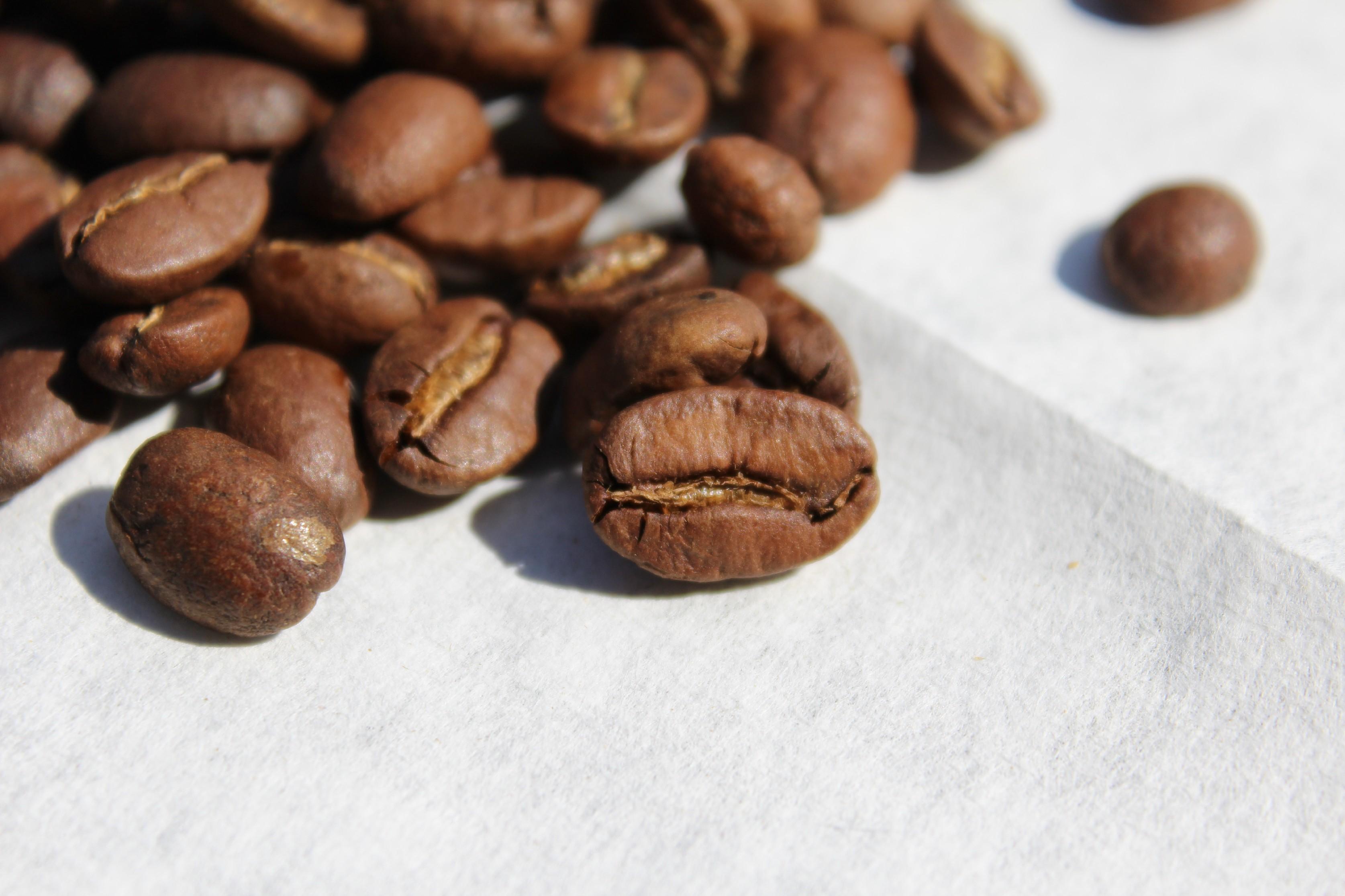 BotaCoffee Honduras SHG EP La Campa Single Estate (1kg) Mletí kávy: Zrnková