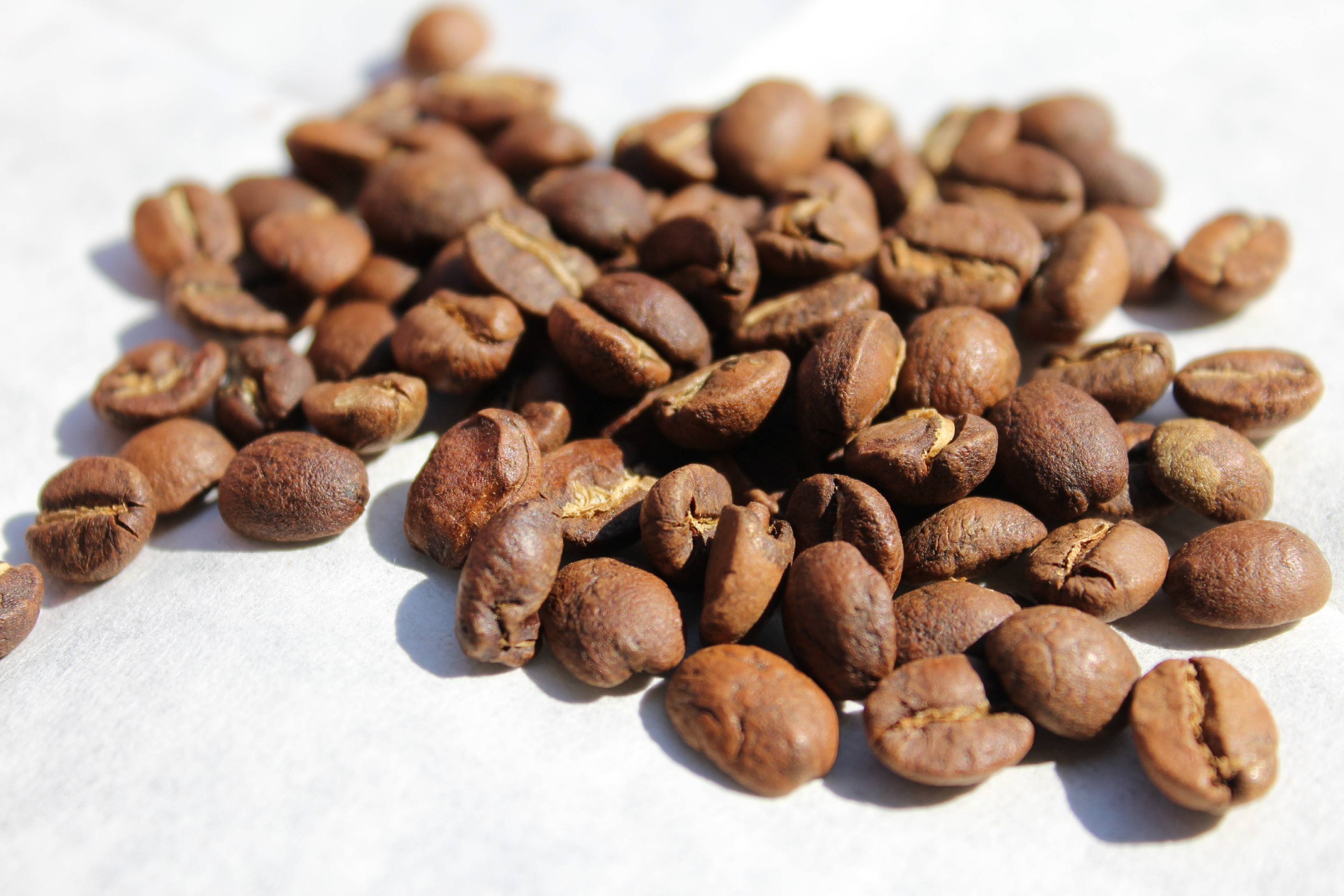 BotaCoffee Tanzania AA Top Songwa Estates (1kg) Mletí kávy: Zrnková