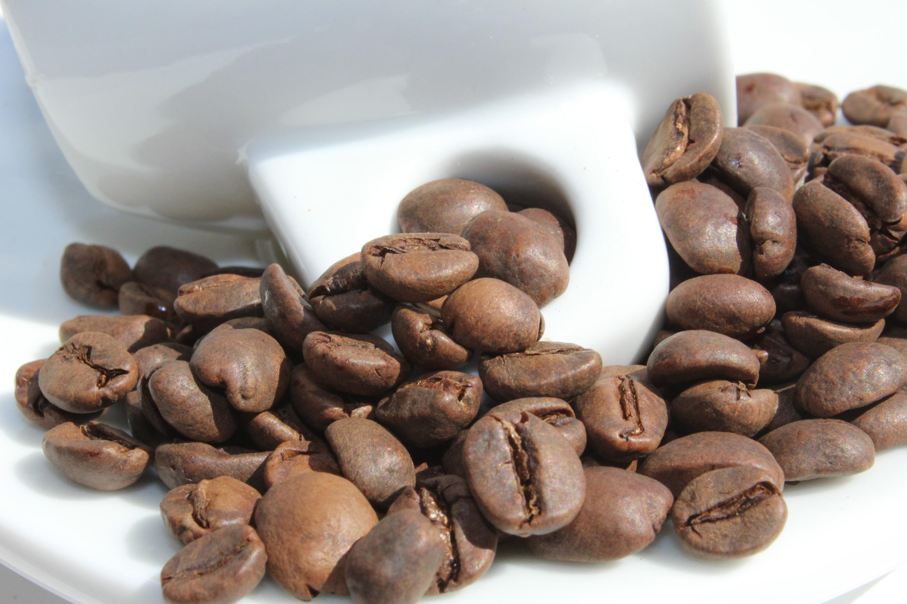 BotaCoffee Brasil DECAF CO2 Fazenda da Lagoa Scr. 14/16 - bezkofeinová (1kg) Mletí kávy: Zrnková