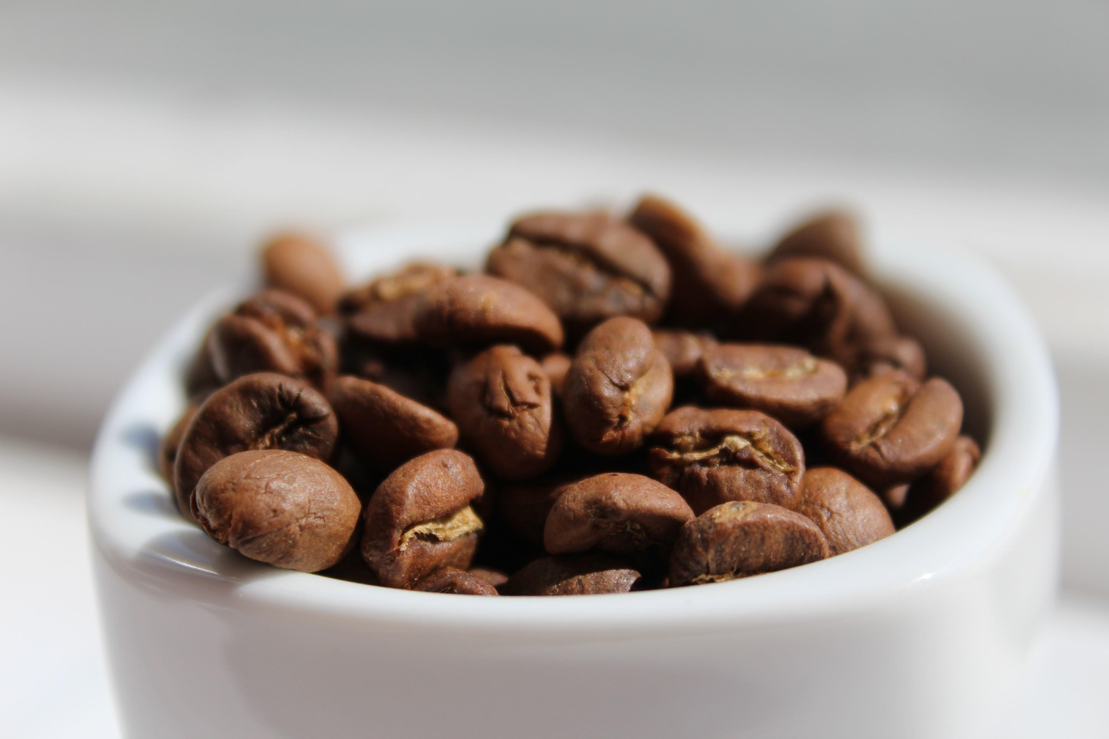 BotaCoffee El Salvador SHG EP Organic RFA Finca Las Nubes Cuzcachapa (1kg) Mletí kávy: Zrnková